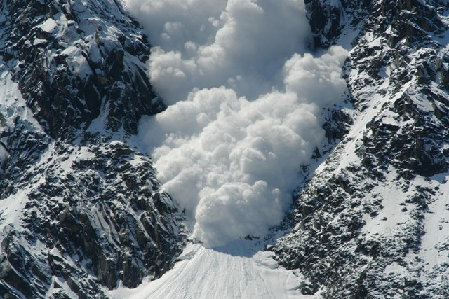 Thoughts on Surviving the Avalanche