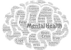 The Covid-19 Mental Health Crisis