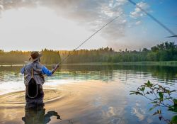 Fly Fishing and the Market
