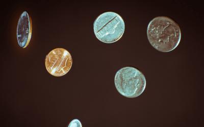 Beware Economists Bearing Policy Paradigms